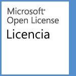 Microsoft Office Professional Plus 2013 OLP C