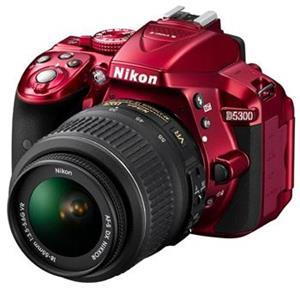 NIKON D5300 + AF-P 18-55 VR RED
