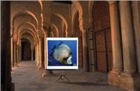 Premietacie plátno prenosné Reflecta Alpha Lux 180x180cm