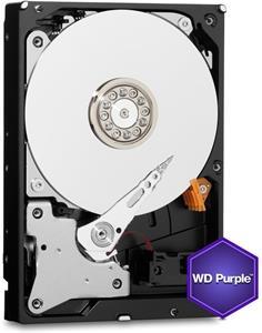 WD Purple 1TB, IntelliPower, 64MB cache