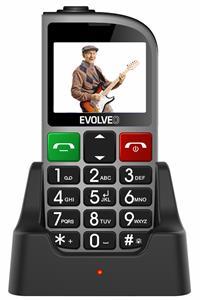 EVOLVEO EasyPhone FM, Dual SIM, strieborný