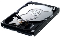 HDD Samsung 250GB Serial ATA II 7200ot. 8MB, SpinPoint F1