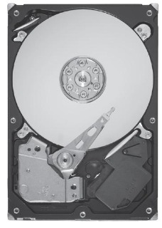 HDD Seagate ST31000524AS, 1TB SATA III, 7200RPM 32MB 3,5""