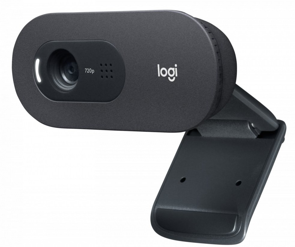 Logitech C505e Business WebCam, USB, čierna