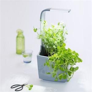 TREGREN T3 Kitchen Garden, chytrý kvetináč, sivý