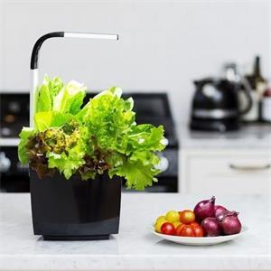 TREGREN T3 Kitchen Garden, smart kvetináč, čierny
