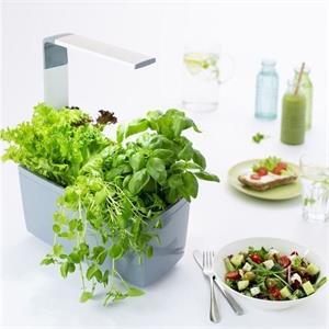 TREGREN T6 Kitchen Garden, chytrý kvetináč, sivý