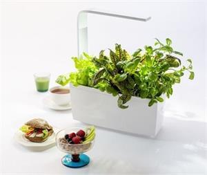 TREGREN T6 Kitchen Garden, smart kvetináč, biely