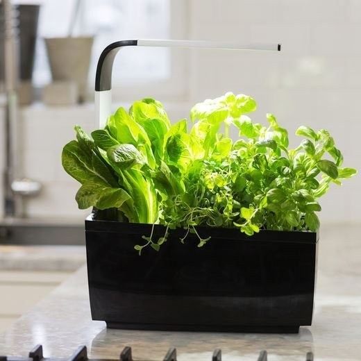 TREGREN T6 Kitchen Garden, smart kvetináč, čierny